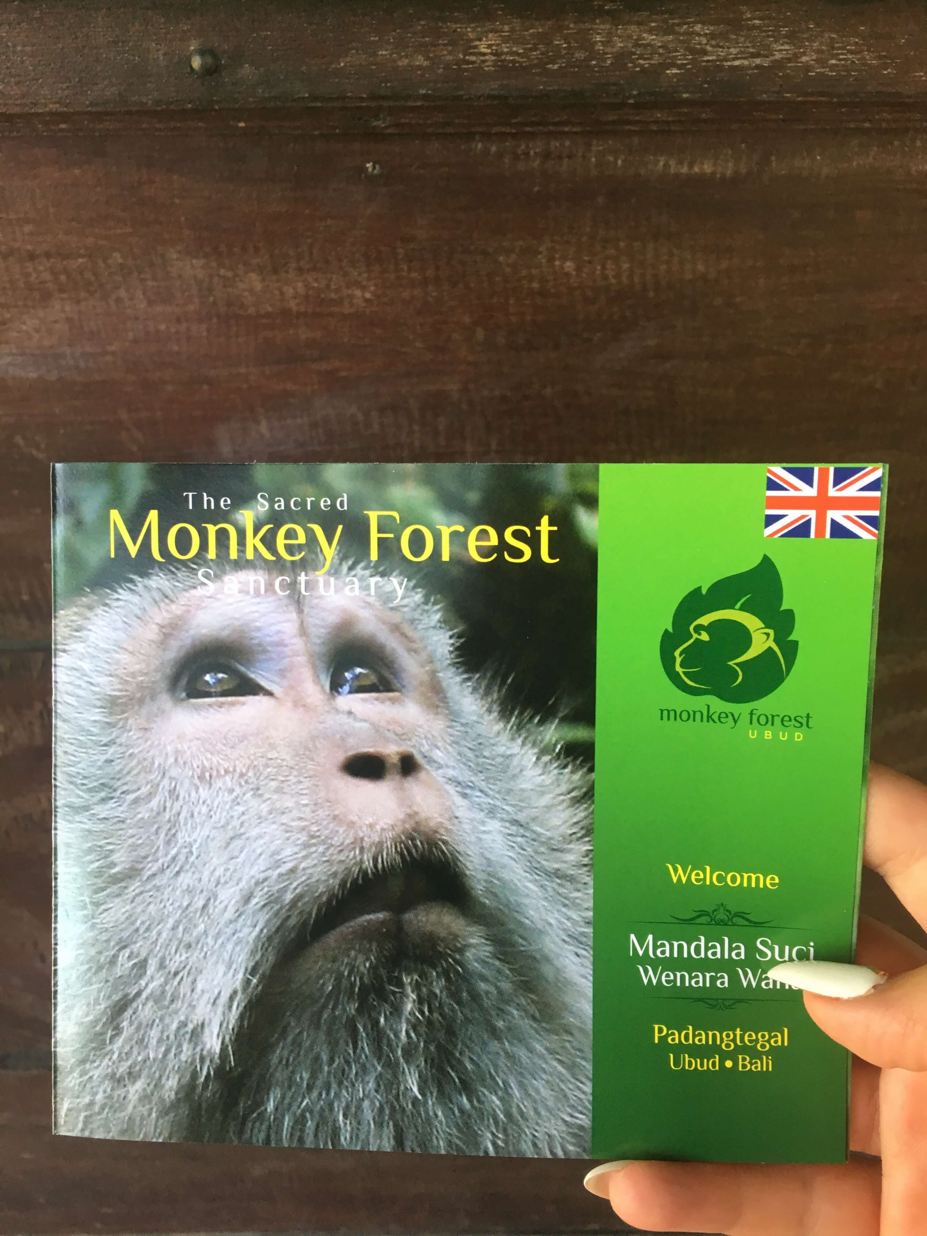 Epic Travel Fails Part 1 - The One when A Monkey Ate my